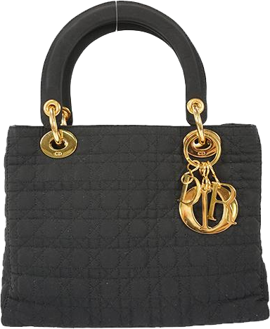 Buy & Consign Authentic Lady Dior Fabric Tote at The Plush Posh