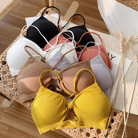 Pastel Push Up Bralettes