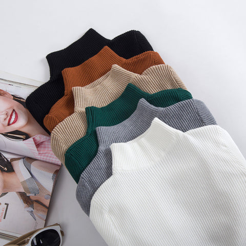 Multi-colored Knitted Turtlenecks