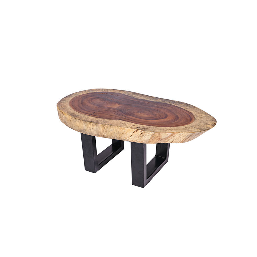 COFFEE TABLE PICH IRREGULAR