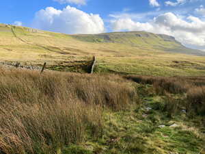 Pen y Ghent & Plover Hill (6th June 2021)