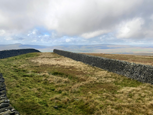 Pen y Ghent & Plover Hill, Yorkshire Dales (27th June 2021)