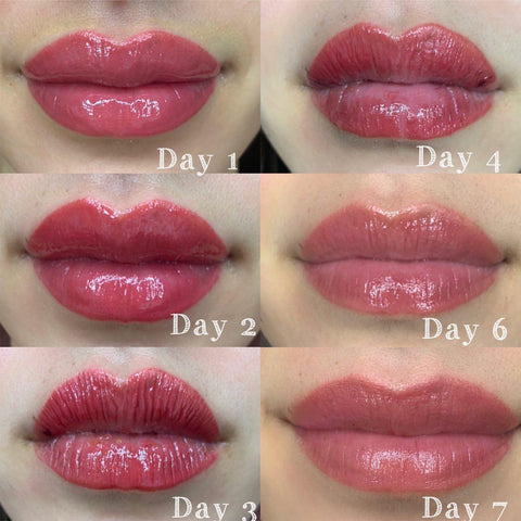 Photo of actual healing process after a lip blush PMU procedure by Lulu Siciliano. This is a best-case scenario with a light-handed artist and where the model followed all pre- and aftercare recommendations.
