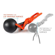 "Load image into Gallery viewer, Tiger Tail - 1.7"" & 2.6"" Tiger Ball"