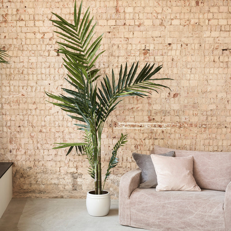 Tall Faux Kentia Palm