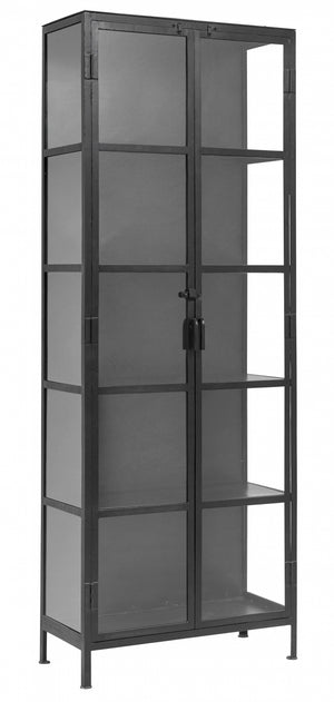 Tall Glass & Iron Cabinet