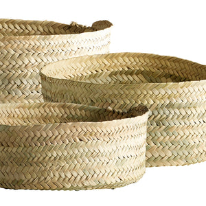 Set of 3 Woven Citrus Baskets