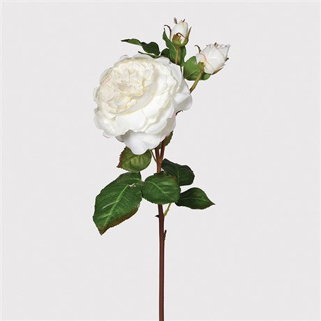 Real Feel White Rose | Design Vintage