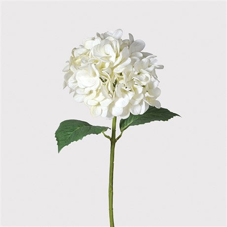 Real Feel White Hydrangea | Design Vintage