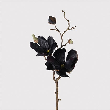 Black Magnolia Spray | Design Vintage