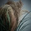 Abigail Ahern Dried Pampas Grass | Design Vintage