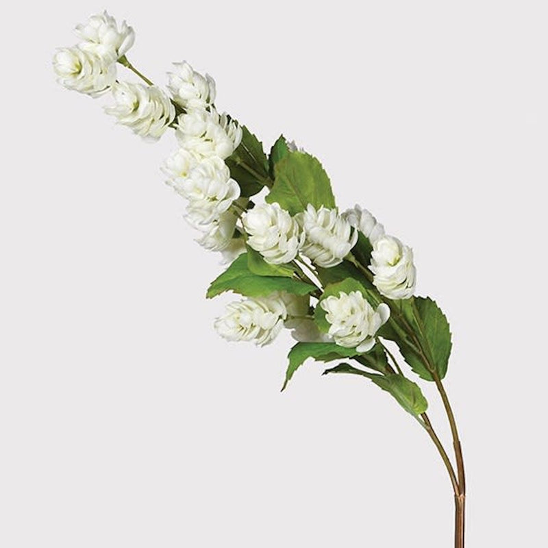 White Hops Stem | Design Vintage
