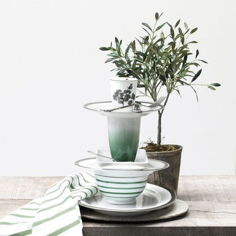 Potted Small Olive Tree | Design Vintage