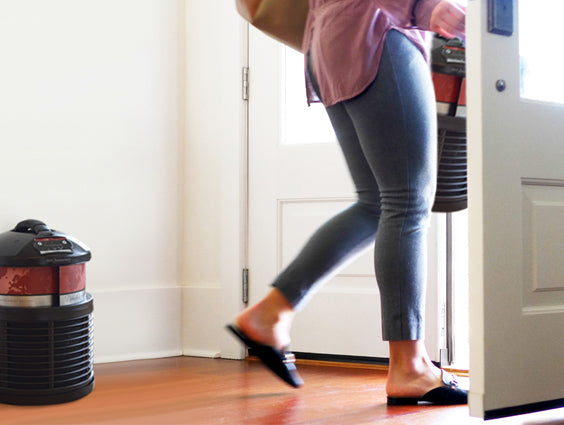 Portable Air Purifier – Who Says You Can't Take it With You?