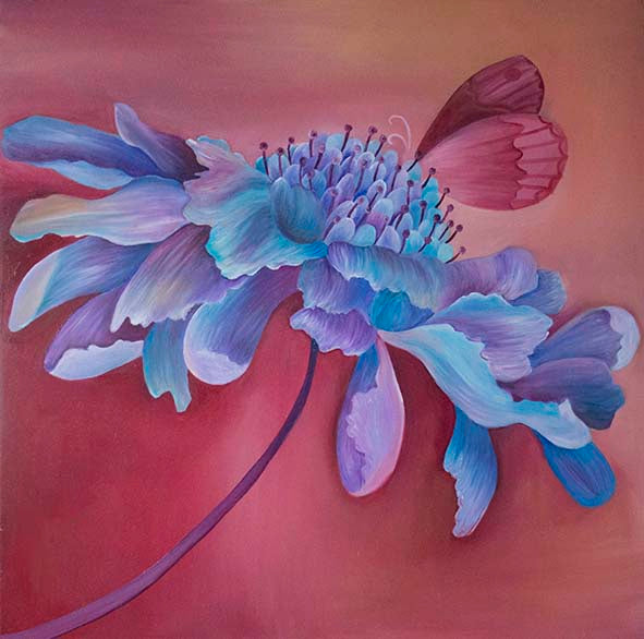 Scabious Limited Edition Print