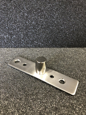 Top Patch Pivot Plate Glass Door  - Stainless Brushed - QIC Ironmongery