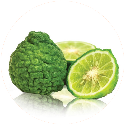 What are natural benefits of Bergamot Oil? Aromanthi Aromatherapy Essential Oil