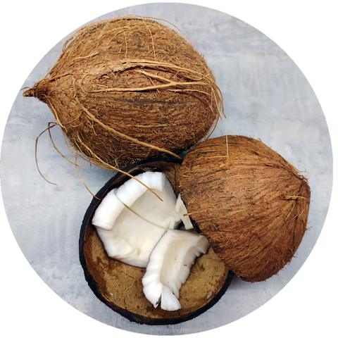 What are natural benefits of Coconut Oil? Aromanthi Aromatherapy hypoallergenic body butter