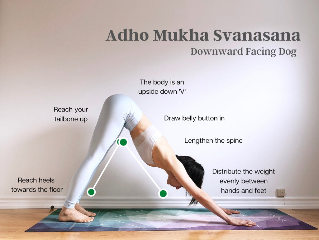 How to do Downward-Facing Dog - Adho Mukha Svanasana