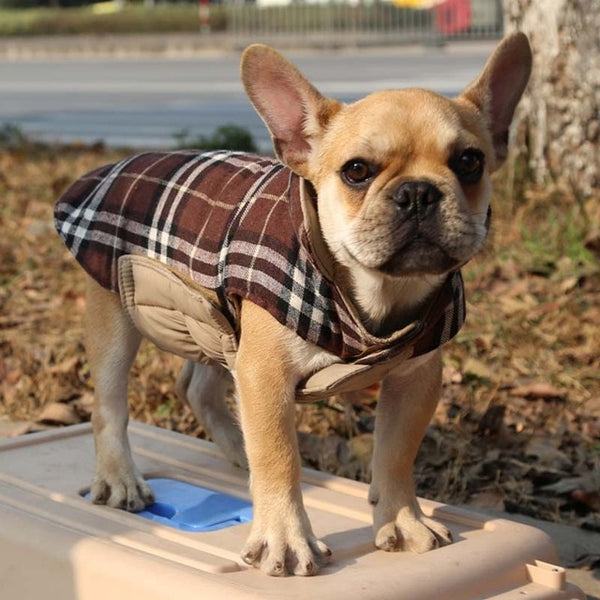 Plaid Vest - (Small and Large Dog)
