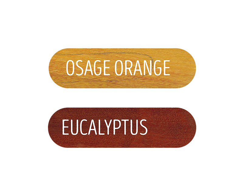 Rainbow | Wood Stud Earrings | Eucalyptus and Osage Orange