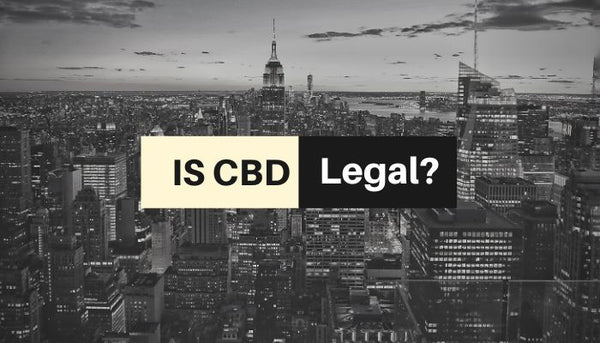 Is CBD Legal In All 50 States - Where Can I Buy It Online?