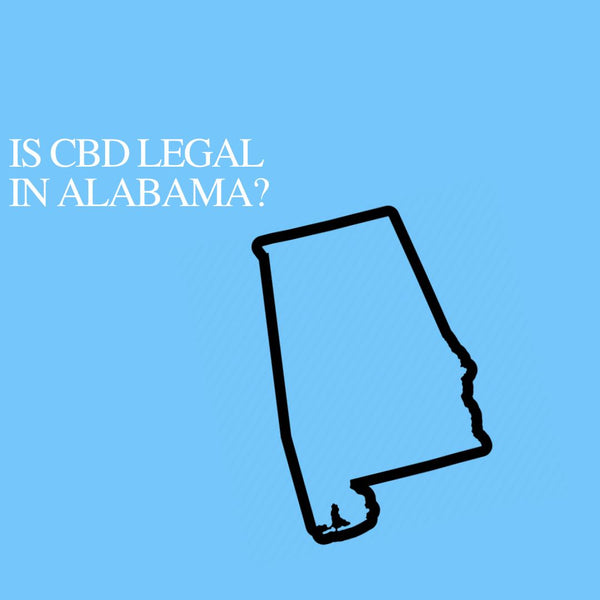 Is CBD Oil Legal in Alabama: Where to buy CBD Near Me?