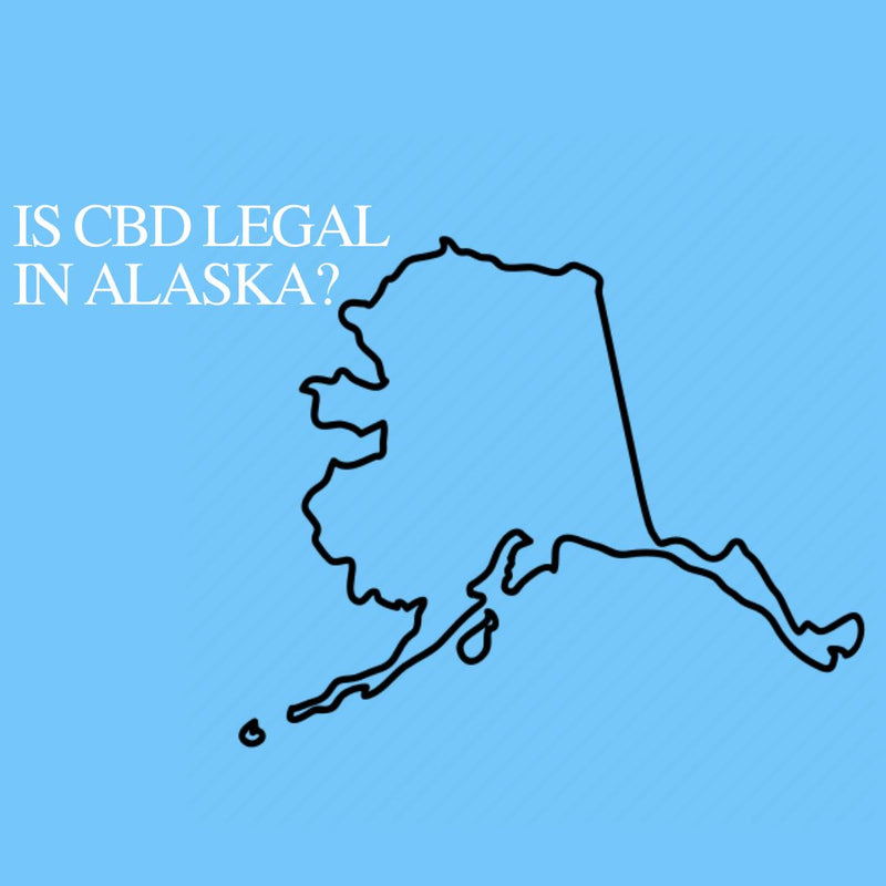 Is CBD Oil Legal in Alaska: Where to buy CBD Near Me?