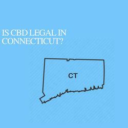 Is CBD Oil Legal in Connecticut: Where to buy CBD Near Me?