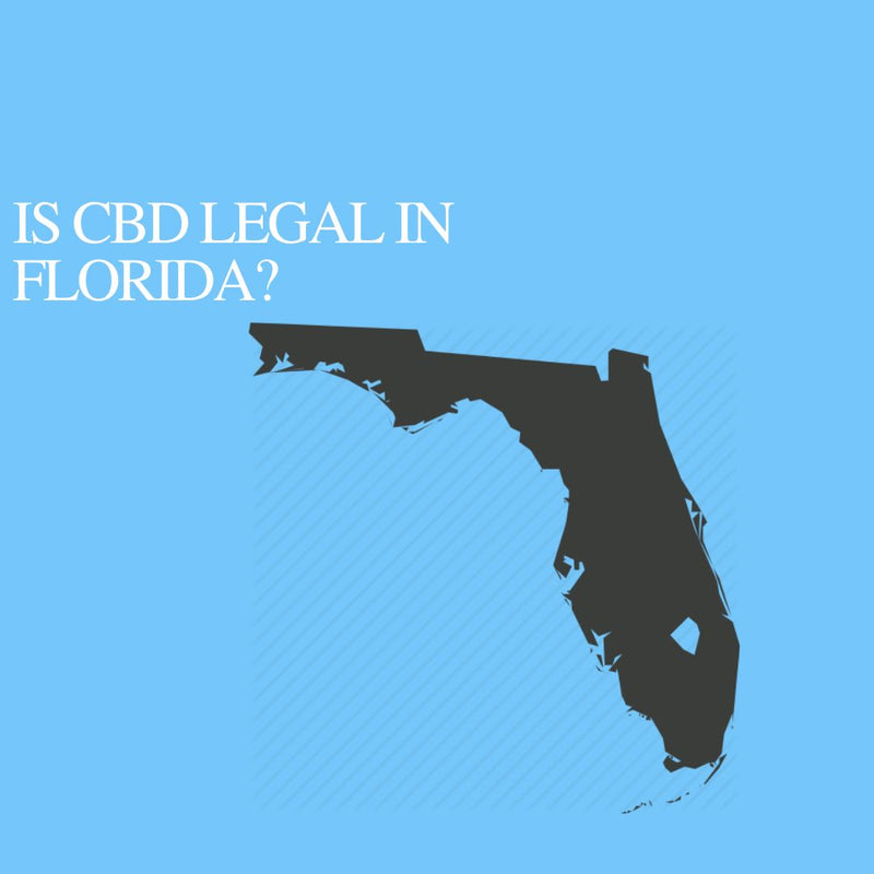 Is CBD Oil Legal in Florida: Where to buy CBD Near Me?