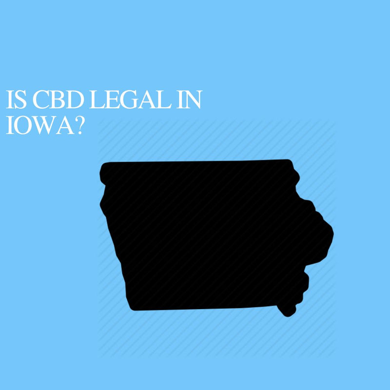 Is CBD Oil Legal in Iowa: Where to buy CBD Near Me?