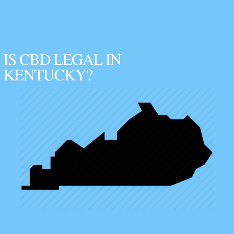 Is CBD Oil Legal in Kentucky: Where to buy CBD Near Me?