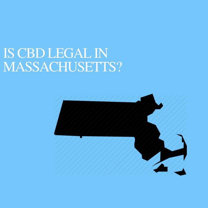 Is CBD Oil Legal in Massachusetts: Where to buy CBD Near Me?