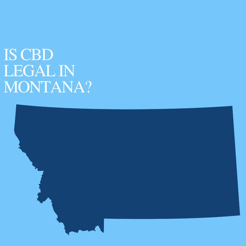 Is CBD Oil Legal in Montana: Where to buy CBD Near Me?