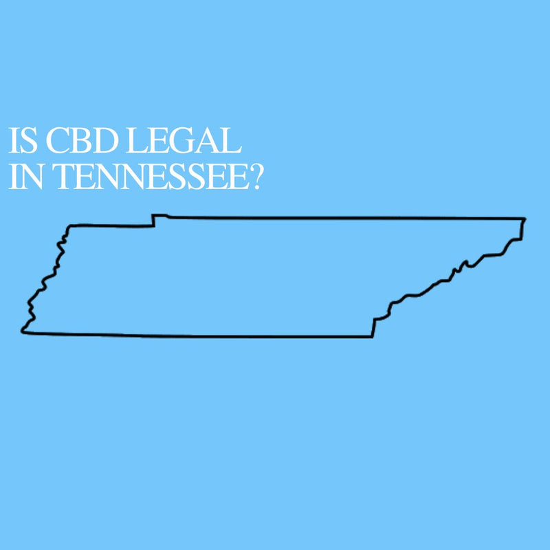 Is CBD Oil Legal in Tennessee : Where to buy CBD Near Me?