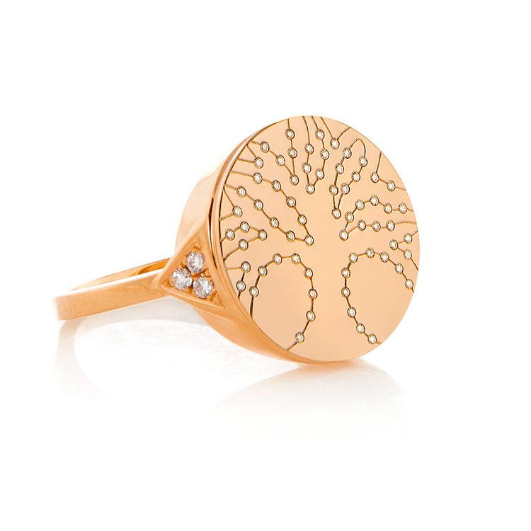 Devon Woodhill | Modern Tree Of Life Signet Ring