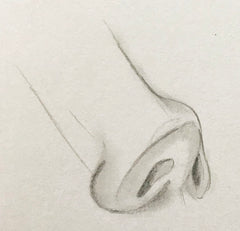 Loeil art blog sketching pencil artist nose drawing different angle front view side how to draw drawing pencil black