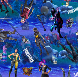 PRE ORDER - Fortnite Charcaters - Fabric Print