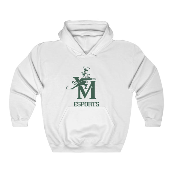 St. Vincent - St. Mary - Front Logo Only - Unisex Heavy Blend™ Hooded Sweatshirt