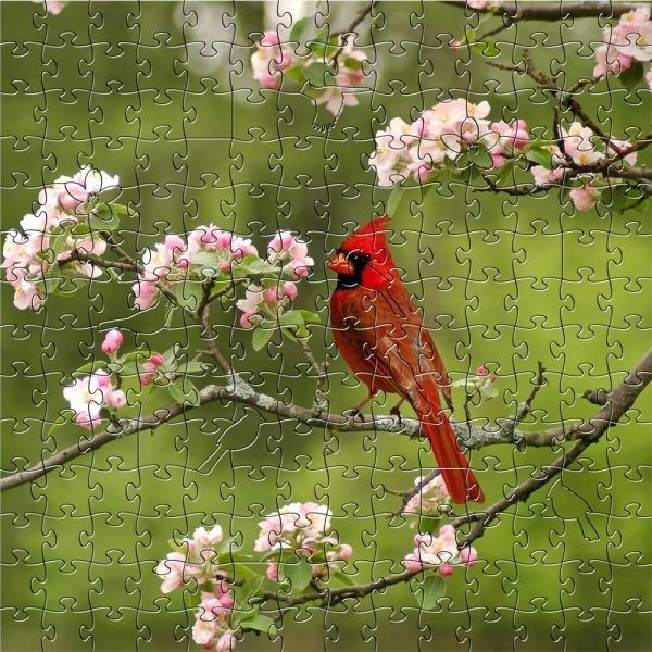 Summer Cardinal Wooden Puzzle - 204 pieces