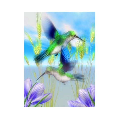 Alan Foxx BIRDS-Emerald Hummingbirds Out and About