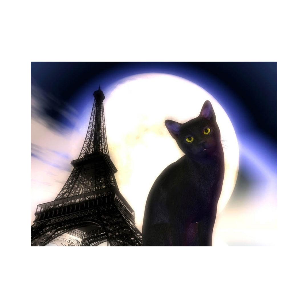 Alan Foxx CATS-Kitty in Paris