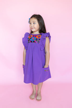 Arcoiris Dress in Grape