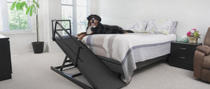 big dog ramp for beds
