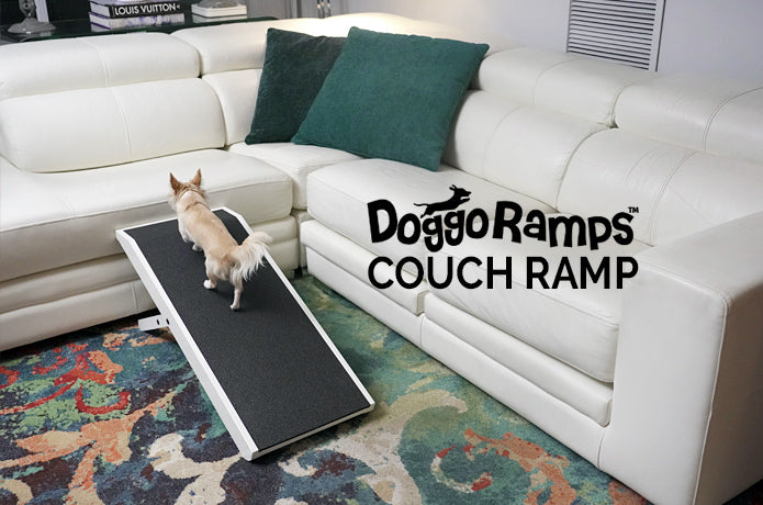 DoggoRamps Couch ramp for dogs
