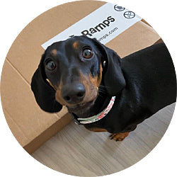 DoggoRamps Shipping Policy and Information