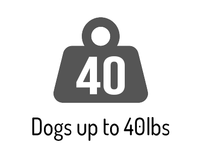 for dogs up to 40lbs