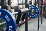 CLUSTER Safety Squat Bar S40