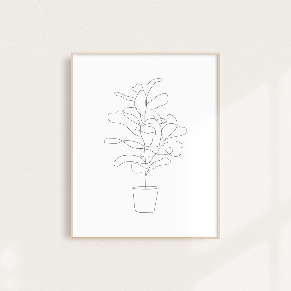 Fiddle Fig - Art Print