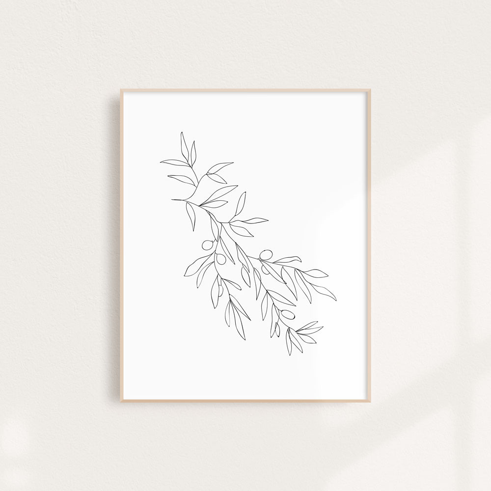 Line Drawing Olive Branch - Art Print 11 x 14